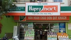 Tập đoàn BRG mở thêm 10 cửa hàng Haprofood phục vụ nhân dân thủ đô mua sắm hàng hóa tiêu dùng thiết yếu