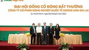 Ông Trần Bá Dương kiêm thêm chức Chủ tịch HĐQT HAGL Agrico
