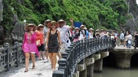Doanh nghiệp du lịch kiến nghị giảm 50% thuế VAT để khôi phục kinh doanh