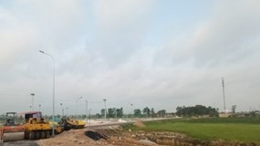 Bắc Ninh: Chủ đầu tư Dự án khu nhà ở thôn Mẫn Xá lách luật, bán lúa non ra thị trường?