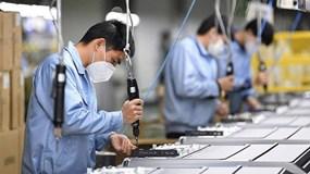 3 cái tên đầu tiên tại Tp.HCM được vay lãi suất 0% để trả lương thôi việc cho lao động