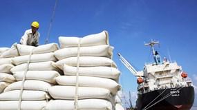 Xuất khẩu gạo Châu Á khó khăn, giá trì trệ do cước vận tải quá cao và thiếu tàu