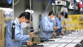 Chính phủ ban hành Nghị quyết hỗ trợ doanh nghiệp