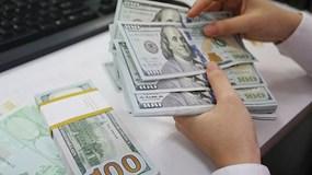 Sau gần 1 năm neo giữ, Ngân hàng Nhà nước hạ giá mua USD