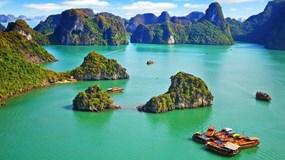 Đề xuất Chính phủ giảm thuế 50%, cân nhắc gói hỗ trợ tiếp theo để 'cứu' ngành du lịch