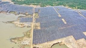 T&T Group đồng loạt hòa lưới điện 3 nhà máy điện mặt trời