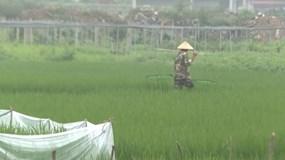 """""""Hô biến"""" đất nông nghiệp thành đất thổ cư đem ra bán đấu giá, Phó Chủ tịch TP Thái Nguyên tuyên bố vẫn đúng luật(?!)"""