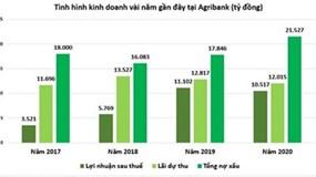 Agribank: Lãi dự thu cao hơn cả lợi nhuận, nợ xấu cao nhất nhì hệ thống