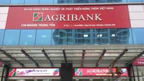 """Agribank: Nợ xấu tăng 30%, """"ôm"""" 89% bất động sản thế chấp"""