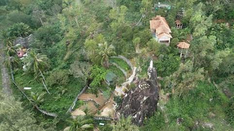 Nguyên Chủ tịch UBMTTQ Việt Nam tỉnh Bình Định bị phạt 4 triệu đồng vì chuyển đổi trái phép đất rừng