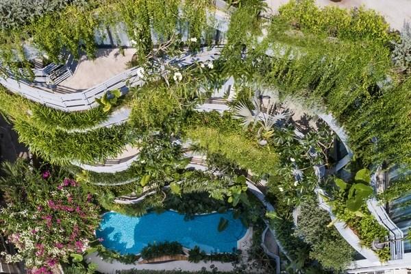 Lạc trong các căn hộ giữa 'khu rừng nhiệt đới' ở TP HCM