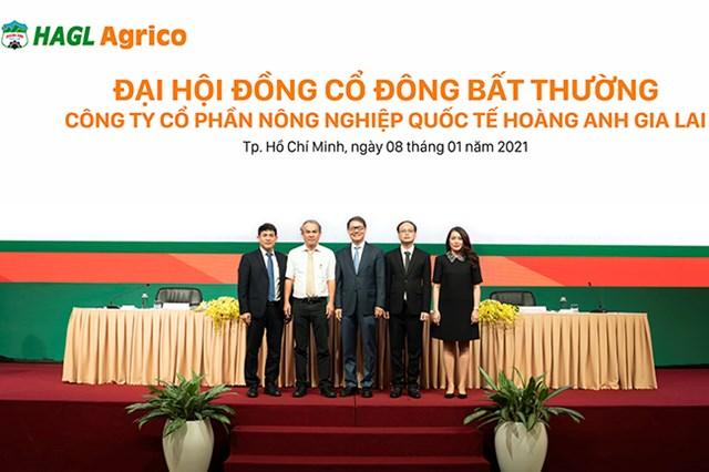Ông Trần Bá Dương kiêm thêm chức Chủ tịch HĐQT HAGL Agrico - Ảnh 1