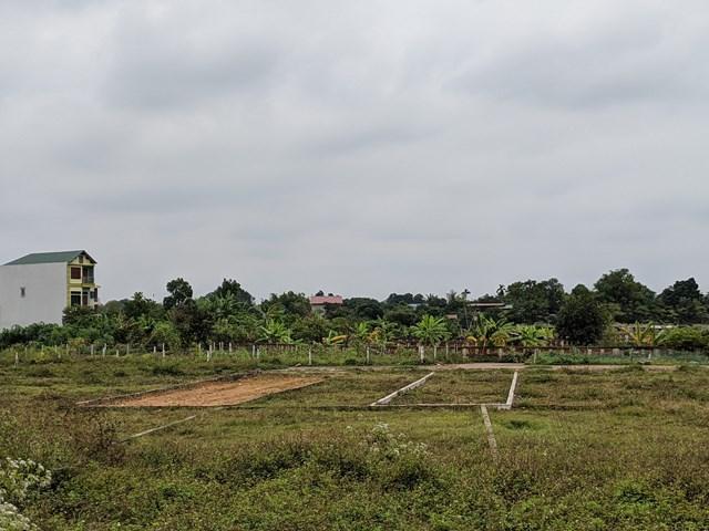 Giá đất nông thôn nhiều nơi tăng cao. (Ảnh minh họa: Hoàng Huy).