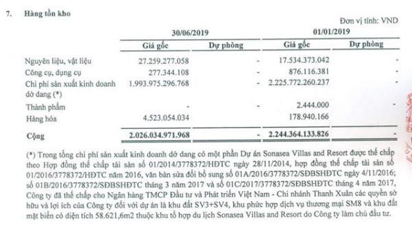 Nguồn: BCTC hợp nhất quý 2/20219 đã soát xét