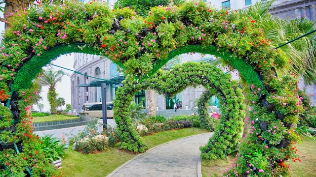 Ngàn hoa khoe sắc trên đồi cao tại Hạ Long thu hút du khách dịp 30/4 - Ảnh 7