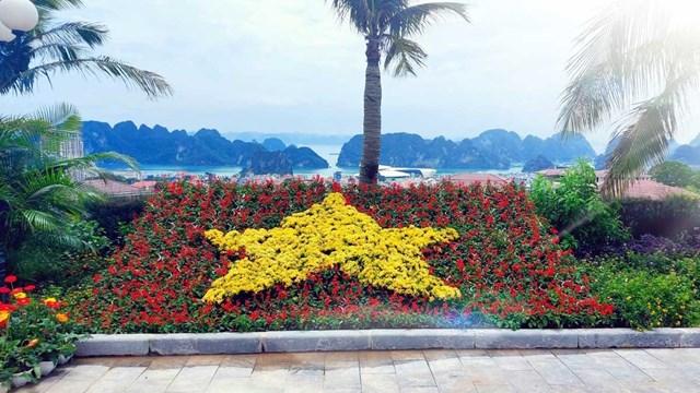 Ngàn hoa khoe sắc trên đồi cao tại Hạ Long thu hút du khách dịp 30/4 - Ảnh 9