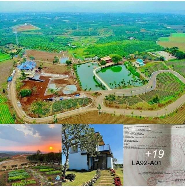 Lâm Đồng: Kiểm tra các dự án ma, khu đất phân lô bán nền theo kiểu Alibaba - Ảnh 1