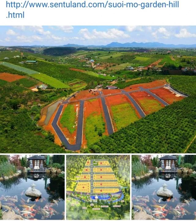 Lâm Đồng: Kiểm tra các dự án ma, khu đất phân lô bán nền theo kiểu Alibaba - Ảnh 2