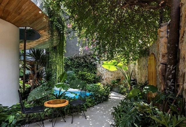 Lạc trong các căn hộ giữa 'khu rừng nhiệt đới' ở TP HCM - Ảnh 4