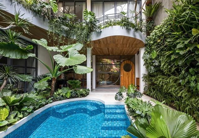 Lạc trong các căn hộ giữa 'khu rừng nhiệt đới' ở TP HCM - Ảnh 1