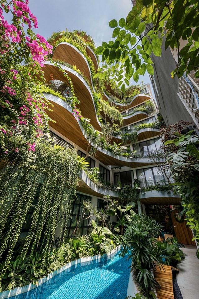 Lạc trong các căn hộ giữa 'khu rừng nhiệt đới' ở TP HCM - Ảnh 3
