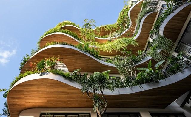 Lạc trong các căn hộ giữa 'khu rừng nhiệt đới' ở TP HCM - Ảnh 5
