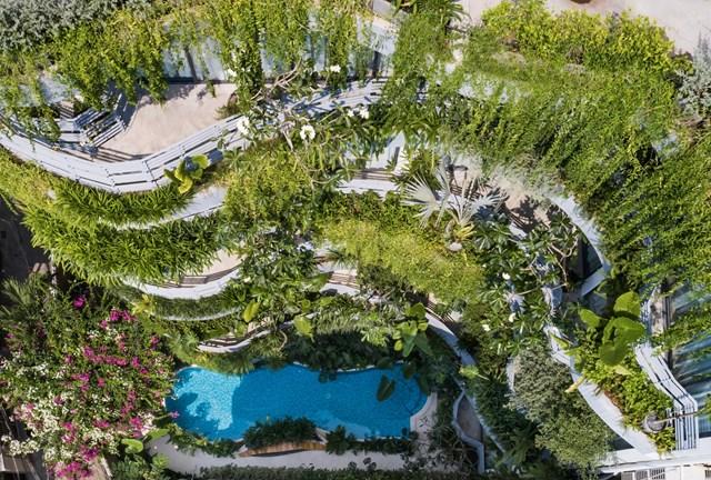 Lạc trong các căn hộ giữa 'khu rừng nhiệt đới' ở TP HCM - Ảnh 2