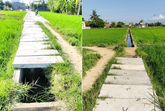 """""""Quá trình con đường được hình thành"""" để được các cơ quan chức năng thị xã Ninh Hoà xem xét cho chuyển mục đích đất trồng lúa nước sang đất ở."""