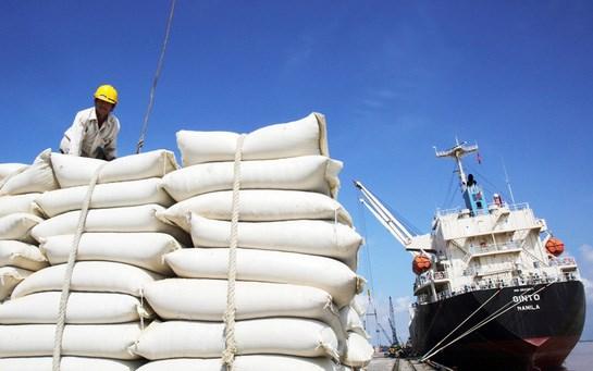 Xuất khẩu gạo Châu Á khó khăn, giá trì trệ do cước vận tải quá cao và thiếu tàu - Ảnh 1