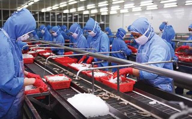 Hiệp hội thủy sản: Nguy cơ chuỗi cung ứng bị đứt gãy, doanh nghiệp phải ngừng hoạt động - Ảnh 1