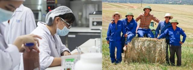Người TH, dù trong văn phòng, trên cánh đồng hay các nhà máy... đều hài lòng với công việc.