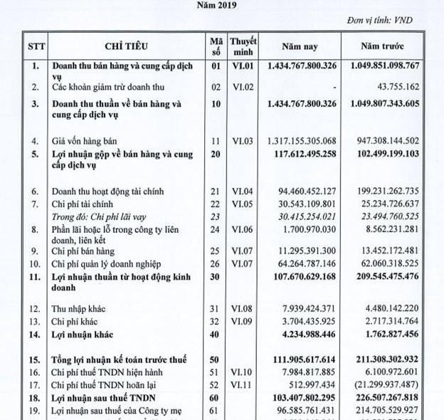 Kết quả kinh doanh năm 2019 tại ALP. Nguồn: BCTC hợp nhất kiểm toán năm 2019.
