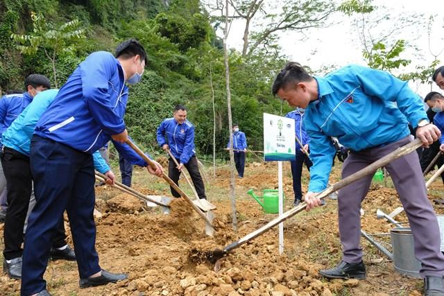 Các đại biểu và đoàn viên thanh niên, học sinh của tỉnh Tuyên Quang cùng nhau trồng cây tại khu vực Lán Hang Thia, Khu di tích lịch sử Tân Trào
