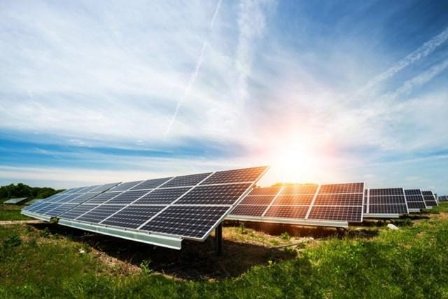Thị trường pin mặt trời: Sản phẩm kém chất lượng ngày càng hoành hành