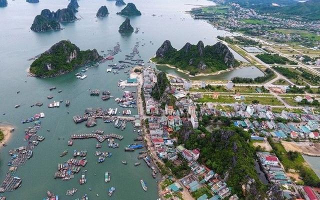 Hồ sơ Cty Mai Quyền làm dự án bến cảng Ao Tiên - Vân Đồn hơn 600 tỷ đồng - Ảnh 1